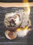 福松のサザエつぼ焼き