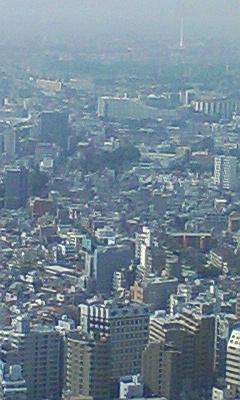 都庁の展望台
